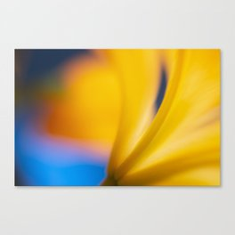Sunshine Lily Canvas Print