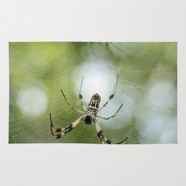Orb Weaver Spider Rug