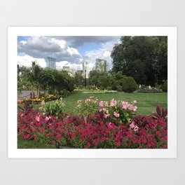 Blooms in Boston Art Print