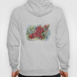 Watercolor Apple quince bloom Hoody