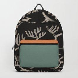 Desert Series - Roadrunner 1 Backpack