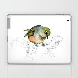 Sylvereye - Waxeye bird Laptop & iPad Skin