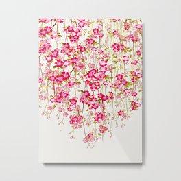 Cherry Blossom 1 Metal Print