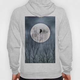 Night Raven Lit By The Full Moon Hoody