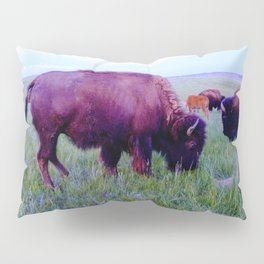 Pte Oyate, Buffalo Nation Pillow Sham