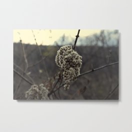 Upstate New York Metal Print