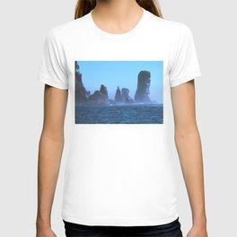 Cape Flattery T-shirt