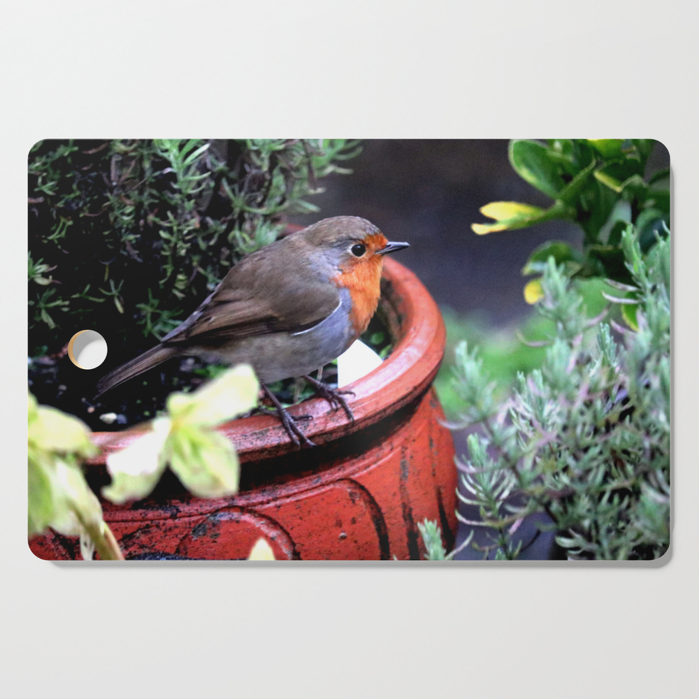 Robin Redbreast Cutting Board by bryanwb (DCB10633414) photo
