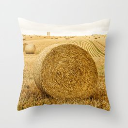 Baled out Throw Pillow
