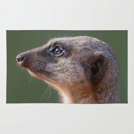 Meerkat Centurion Rug
