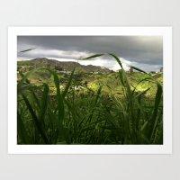 hollywood hills after rain Art Print