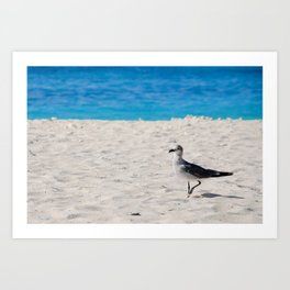 hey dude! Art Print