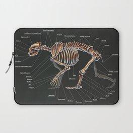 Artctodus Simus Skeletal Study Laptop Sleeve