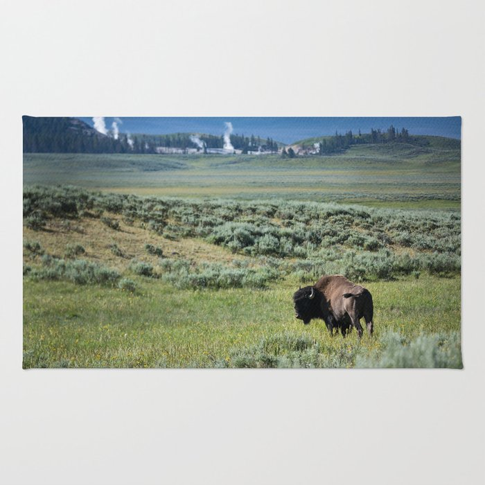 A Bull Bison Heads Towards Thermal Activity in the Hayden Valley of Yellowstone National Park Rug
