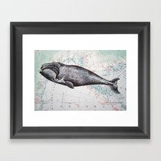 Whale in Antarctica Framed Art Print