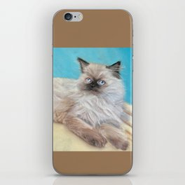Himalayan Kitten iPhone Skin