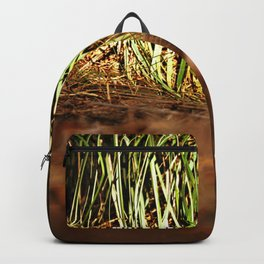 Macro close up forest life spying Backpack
