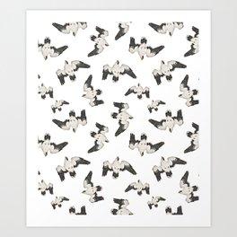 Birds Pattern Photo Collage Art Print