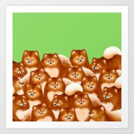 Pomeranians (Green Background) Art Print
