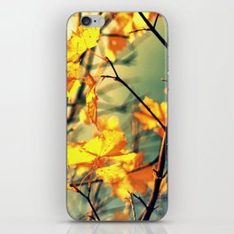 Autumn Light iPhone Skin