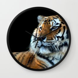 Sumatran Tiger - Panthera Tigris Sumatrae Wall Clock
