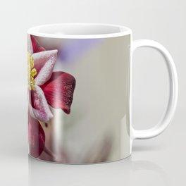 aquilegia flower in bloom in the garden Coffee Mug