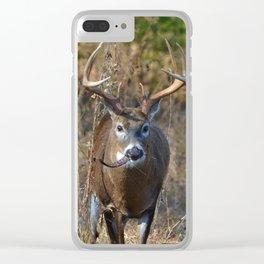 Deer Eating Seedpod Clear iPhone Case