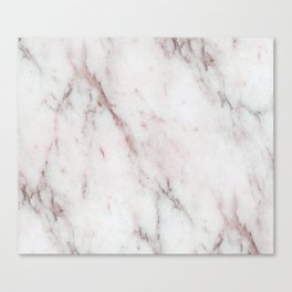 Antico Rosa Canvas Print