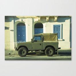 Maltese Landy  Canvas Print