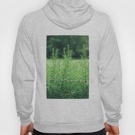 Country Road Take Me Home Hoody