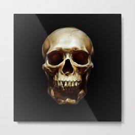 Life. Skull Painting Metal Print