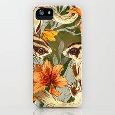 Sugar Gliders iPhone (5, 5s) Slim Case