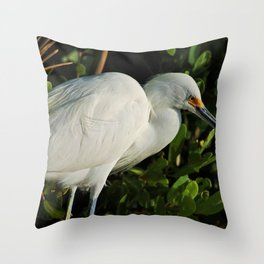 I Almost Forgot About You Throw Pillow