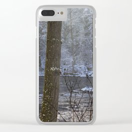 Sunbreak on a Snowy Day Clear iPhone Case