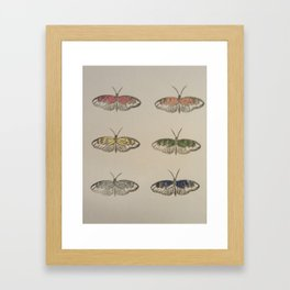 Butterfly stamp collection Framed Art Print