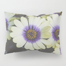 African Daisy Pillow Sham