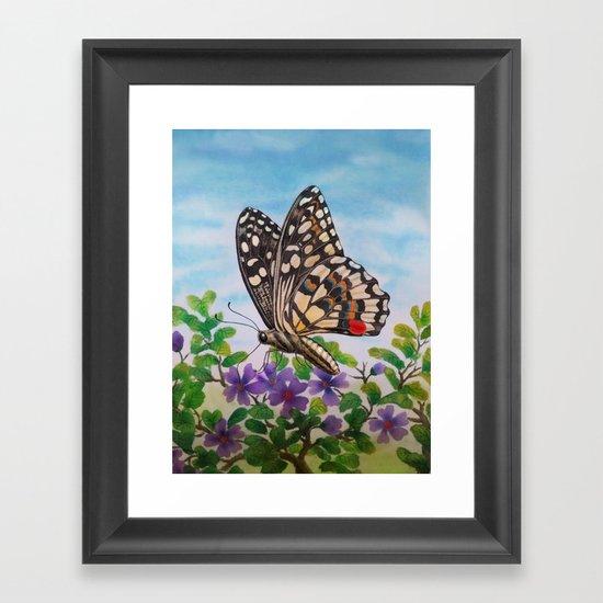 Chequered swallowtail  Framed Art Print