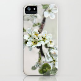 Scattered Kindness  iPhone Case