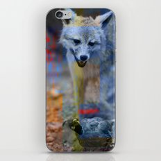 wilderness 15 iPhone & iPod Skin