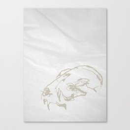 Pale Skull Canvas Print