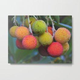Strawberry Tree Metal Print