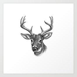 A deer 5 Art Print