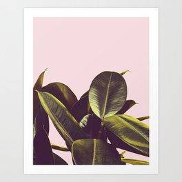 Wilde Botancial Art Print