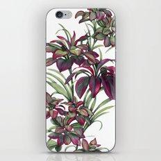 Tropical Leaves Sing iPhone & iPod Skin