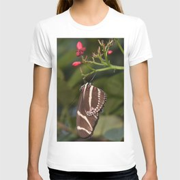 Zebra longwing T-shirt