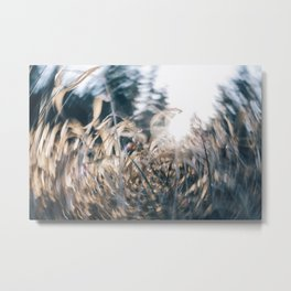 A Whole New Whirl Metal Print