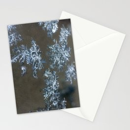 AbitibiWinter1 Stationery Cards