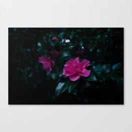 Dark flowers I Canvas Print