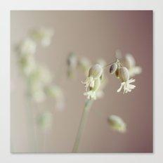 Spring bouquet III Canvas Print