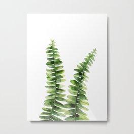 Fern plant Metal Print